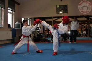 Budo Kids 3 Karate