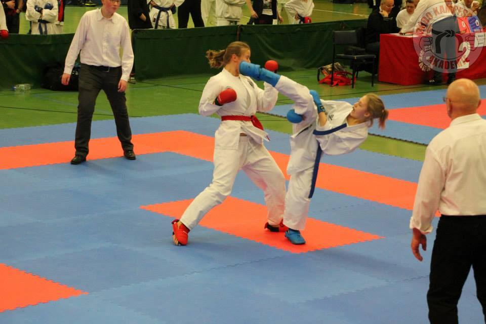 Karate Verein