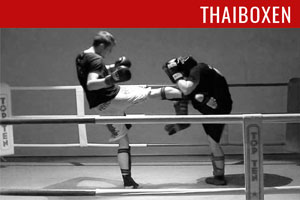 thaiboxen-bild