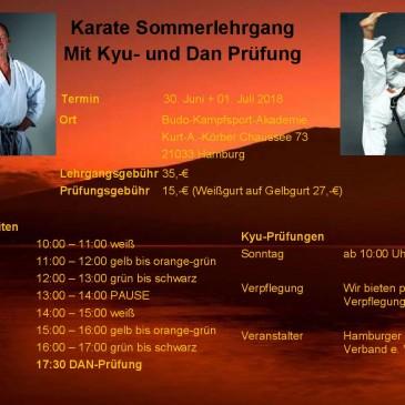 Sommerlehrgang mit Günter Mohr & Ibo Günes
