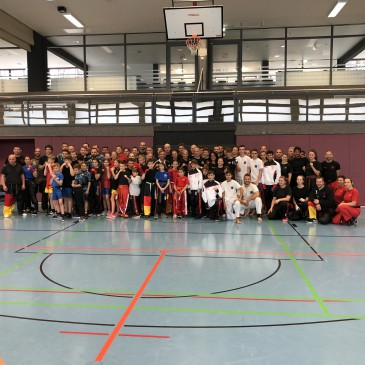Nationaltraining Kickboxen