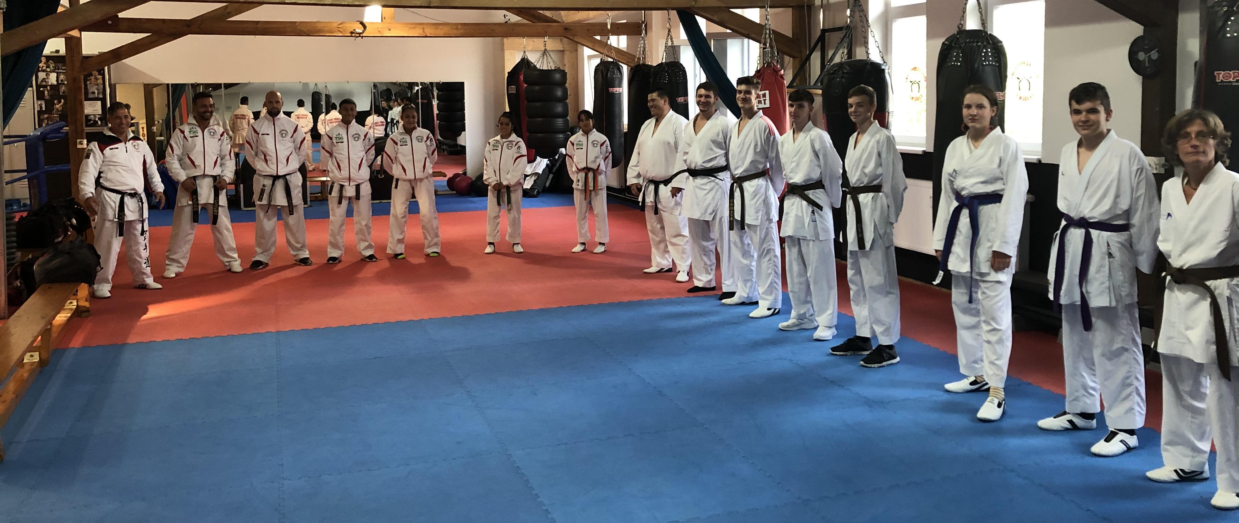 Karate Budo Kampfsport