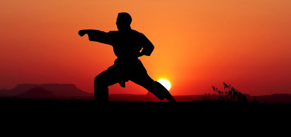 Karate Arten