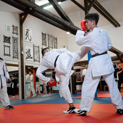 Karate Kumite Erwachsene Drehkick